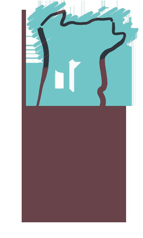 Mapa de Portugal com a zona norte preenchida